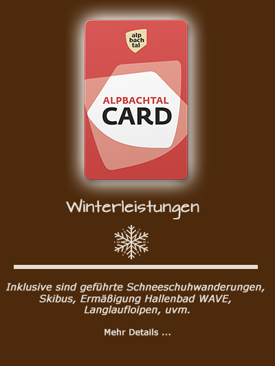 card alpbachtal winter